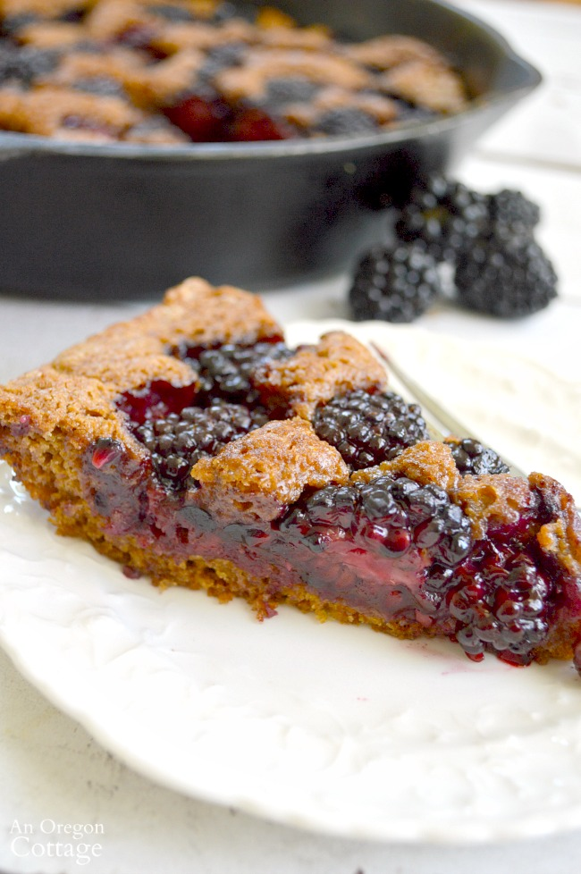Whole Wheat Skillet Blackberry Cobbler on plate