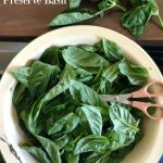 22 Ways to Preserve Basil- and Pesto Isn't One of Them!