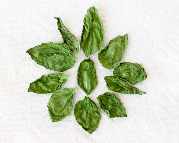 dry-fresh-basil-tutorial-at-thefrugalgirls-com