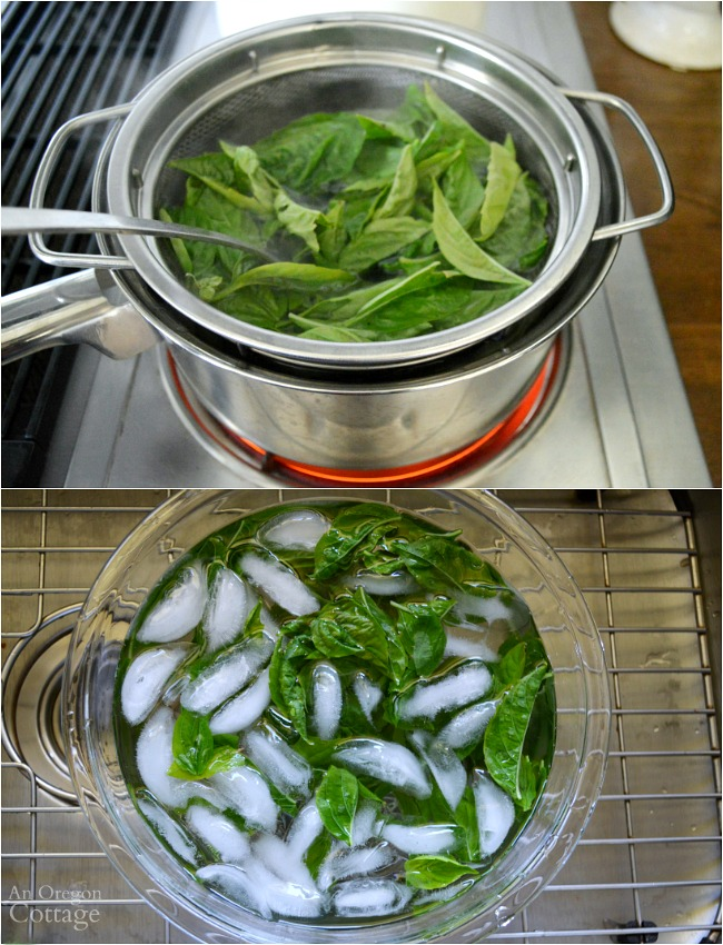 Freezing Basil Leaves-blanching the basil
