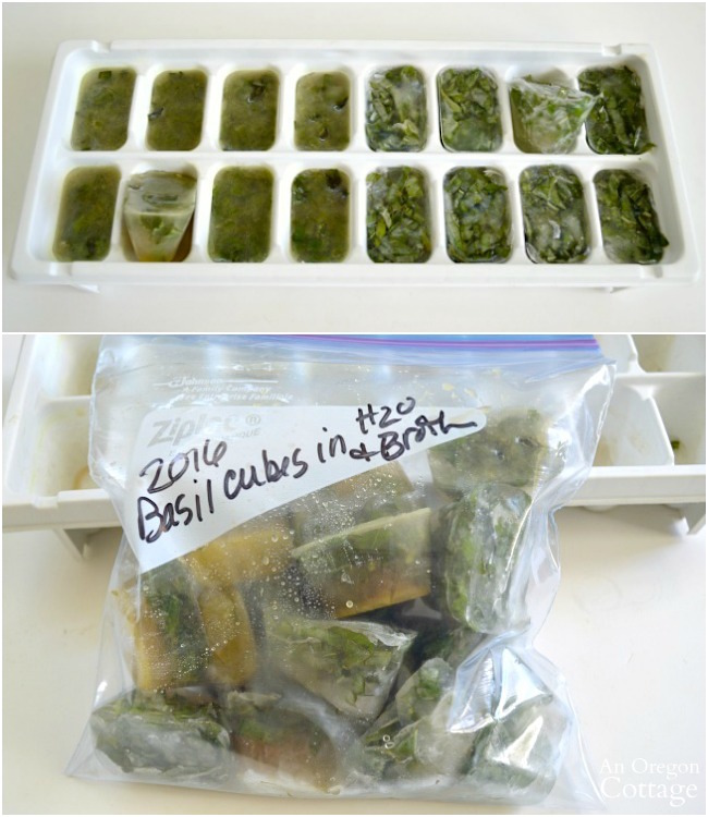 Frozen Basil Leaves in liquid cubes