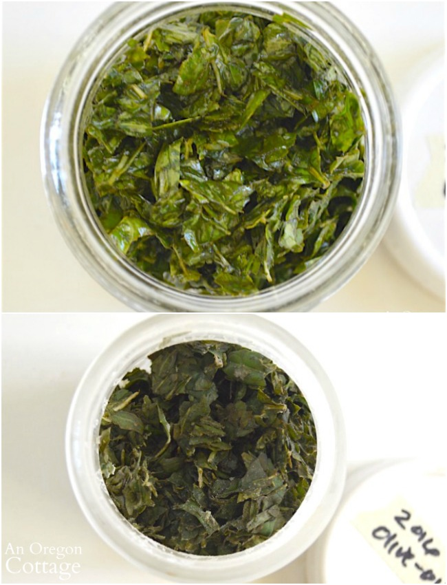 Freezing Basil Leaves-chopped, oiled and frozen