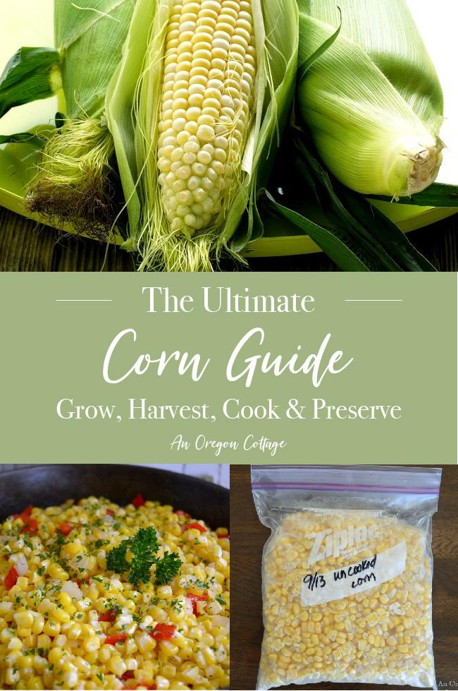 Ultimate corn guide pin image