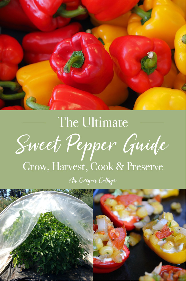 ultimate sweet pepper guide pin image