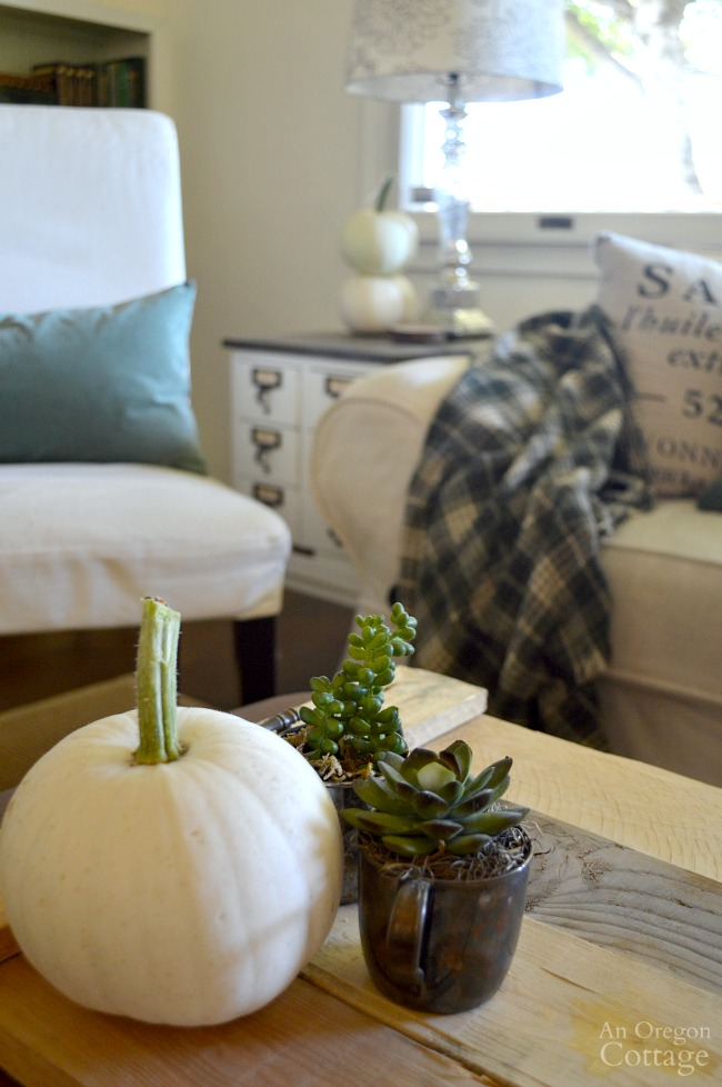 Simple Fall Decor: White Pumpkins with Green Sedum