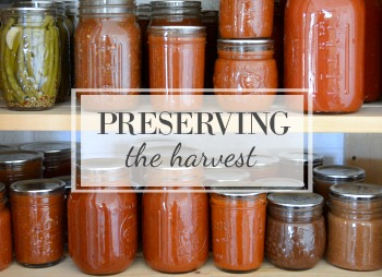 Canning, freezing and drying recipes