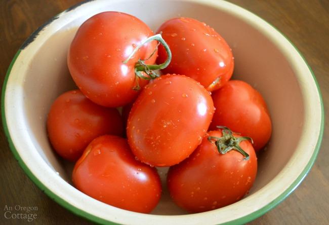 Gardening to Save Money-tomatoes