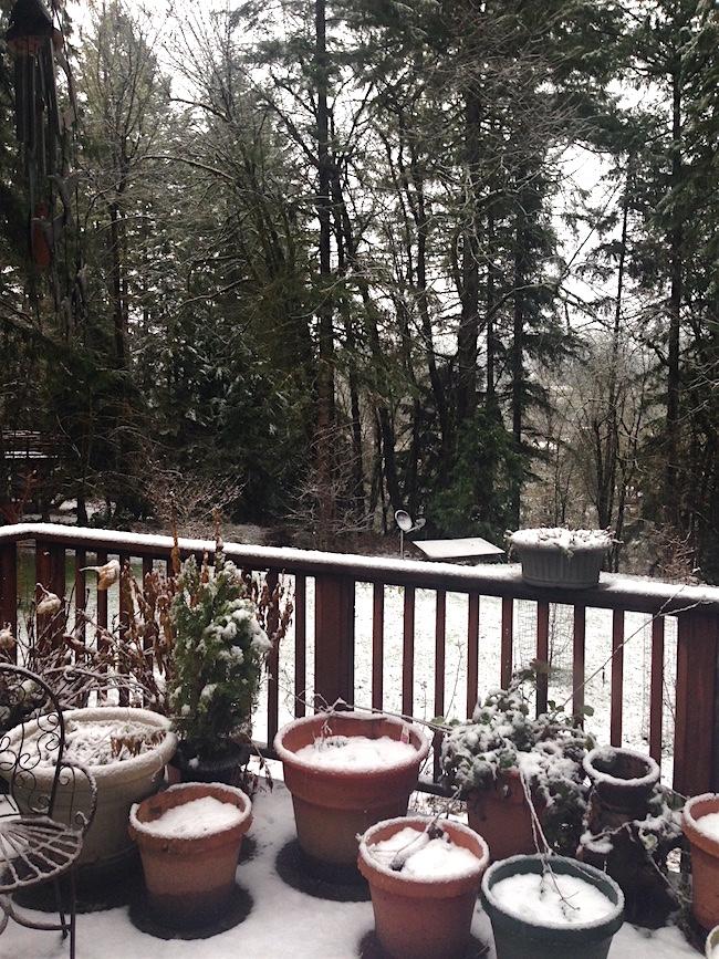 3-6-17 snowy deck