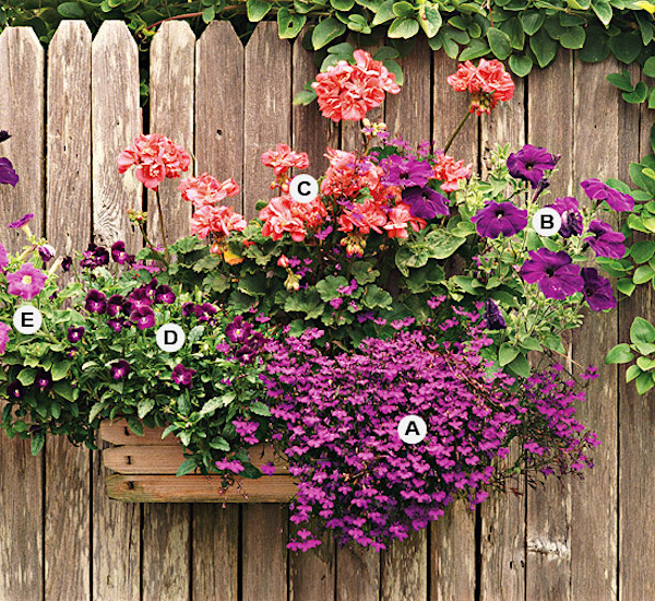 BHG's flower container garden recipes