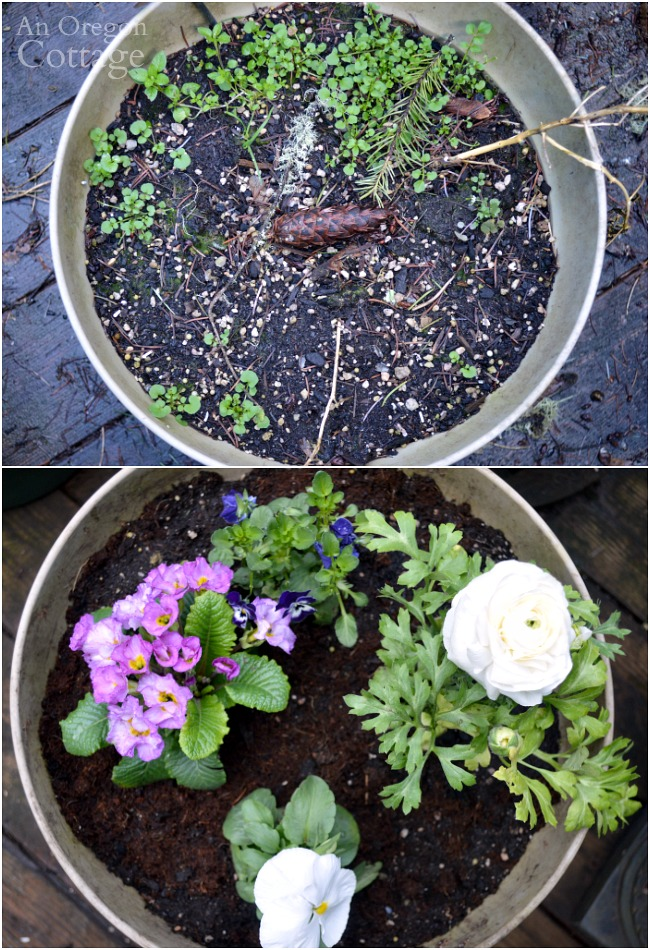 Flower pots for spring before and after