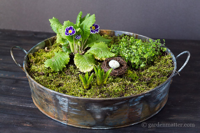 Mini moss garden spring centerpiece at Hearth and Vine