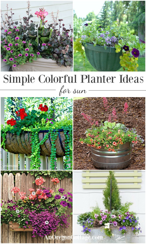 Planter ideas that are simple and colorful using easy-to-find flowers.