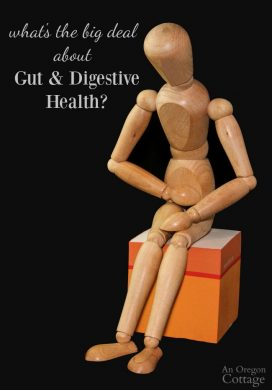 Why Care About a Healthy Gut, What I'm Doing, and What You Can, Too
