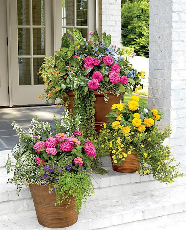 Southern-Living-Flower-Container-Ideas