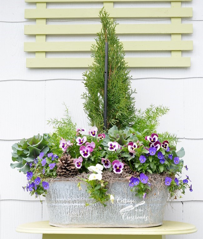 galvanized-tub-planter via Cottage at the Crossroads