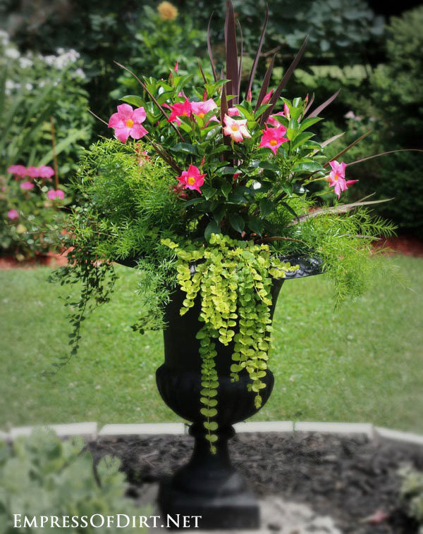 urn-with-pink-flowers via Empress of Dirt