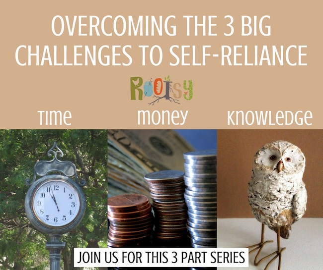Rootsy free challenge series