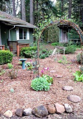 Spring garden mulched with wood chips