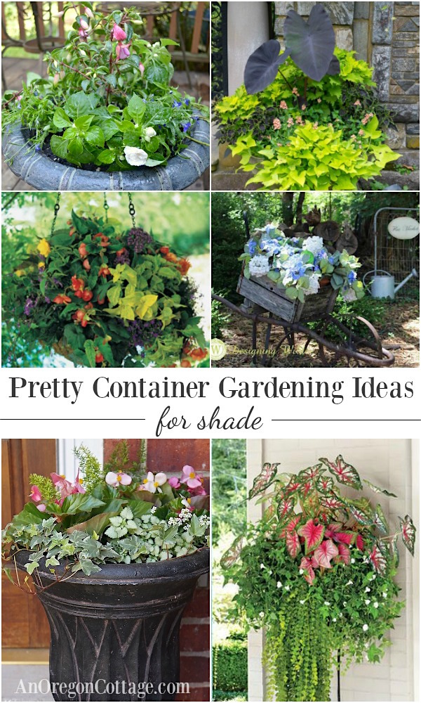 12 beautiful container gardening ideas for shade - Flower Garden Ideas Shade