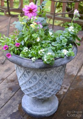 Simple Flower Pot Design for Sun {with Basic Garden Center Plants}