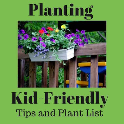 Kid-friendly tips and plant list at Bren Haas Creative Living