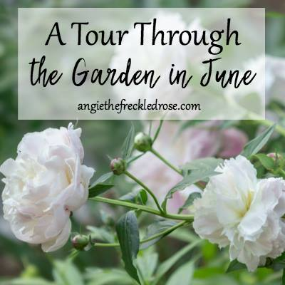 June Garden Tour at The Freckled Rose