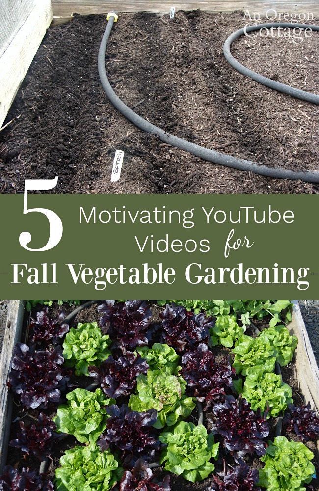 Fall Gardening Ideas Part - 20: An Oregon Cottage
