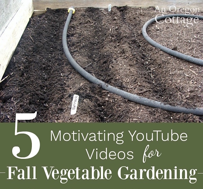 Fall Gardening Ideas 5 Motivating Videos for Vegetables