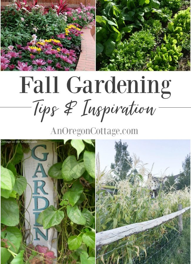 Fall gardening tips and inspirational tours to help you make the most of the autumn months.