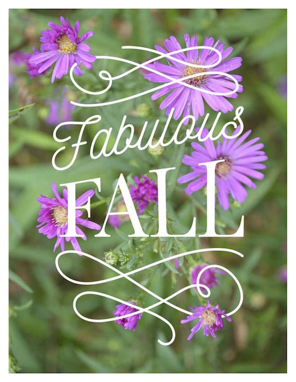 Fall floral printable-aster