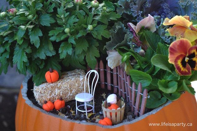 Fall gardening-how to make fall fairy gardens at Tatertots and Jello