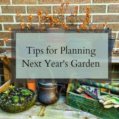 3 Things to Consider for Your Next Garden at Hearth and Vine