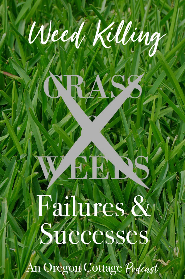 All about weeds - weed killing failures and what we finally had success with, plus how and why to use flavorful spice rubs on meats and vegetables. #weeds