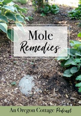 Podcast Ep. 7: Moles, Voles, Reader Mole Remedies & Fermenting