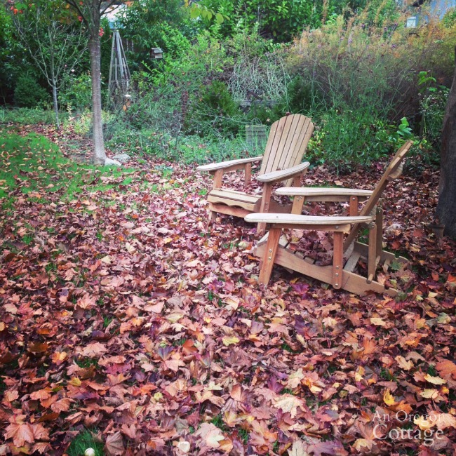 Fall-Winter Garden Tasks-raking leaves