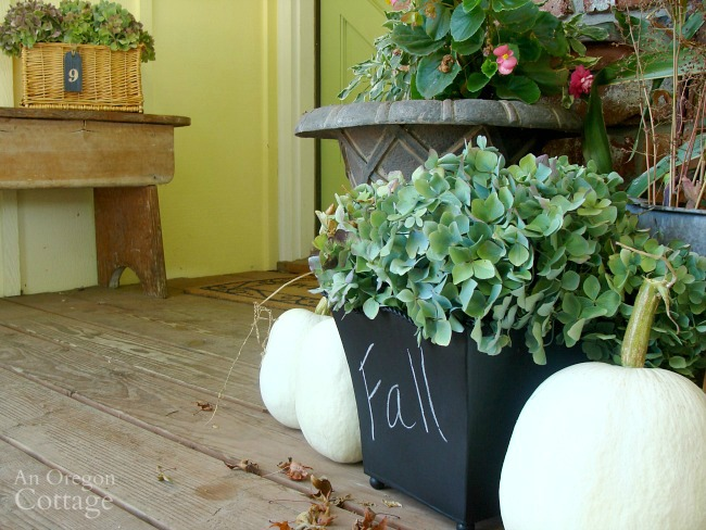 Fall-Winter Garden Yard Tasks-changing containers