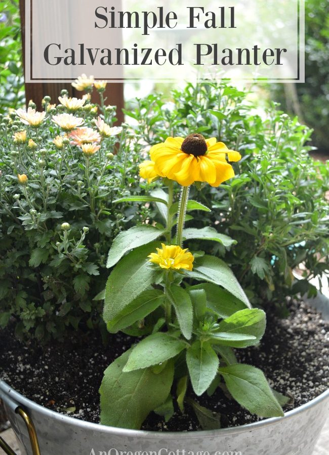 Simple Fall galvanized planters with mums and rudbeckia