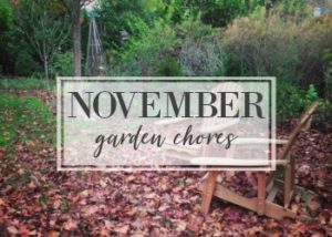 November Garden Task Checklist