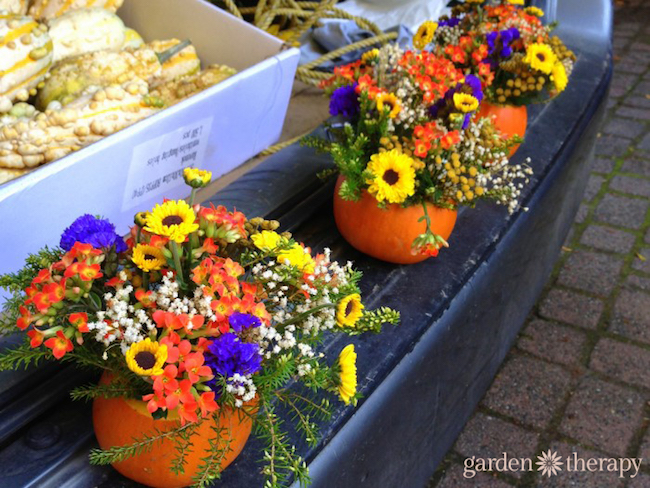 Tailgating-Fall-Style-with-planted-pumpkins-at-the-farmers-market