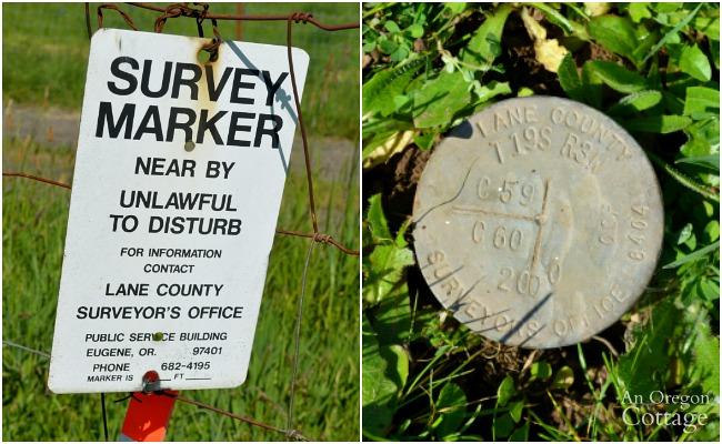 1855 Survey Marker