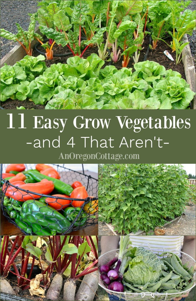 Easy to grow vegetables pin image