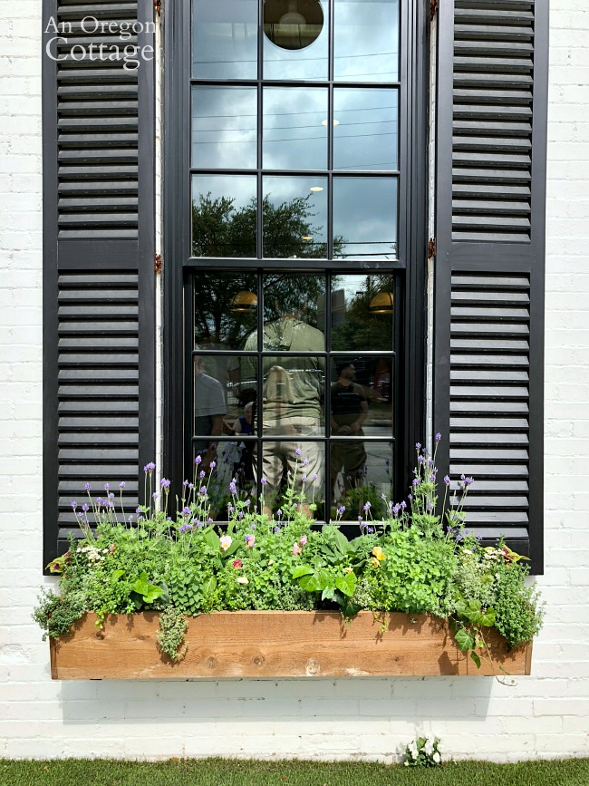 Black framed window, shutters, and window box at the Silos Baking Co.