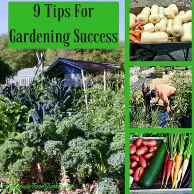 garden images for Tips for garden success