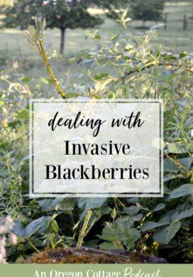 Podcast Ep. 35: Our Blackberry Secret + Farmhouse Updates