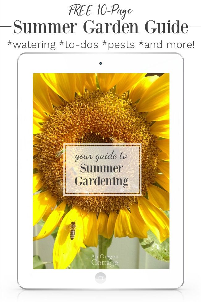 Summer Gardening Guide eBook on ipad
