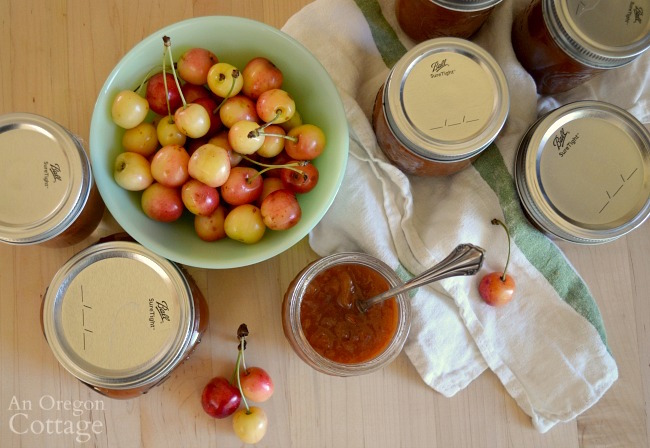 Spicy Honey Sweetened Cherry Chutney recipe from above