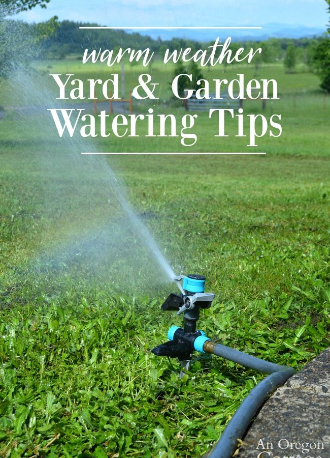 Yard and Garden Watering Tips