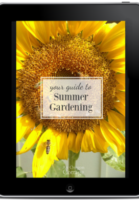 Summer garden guide on iPad