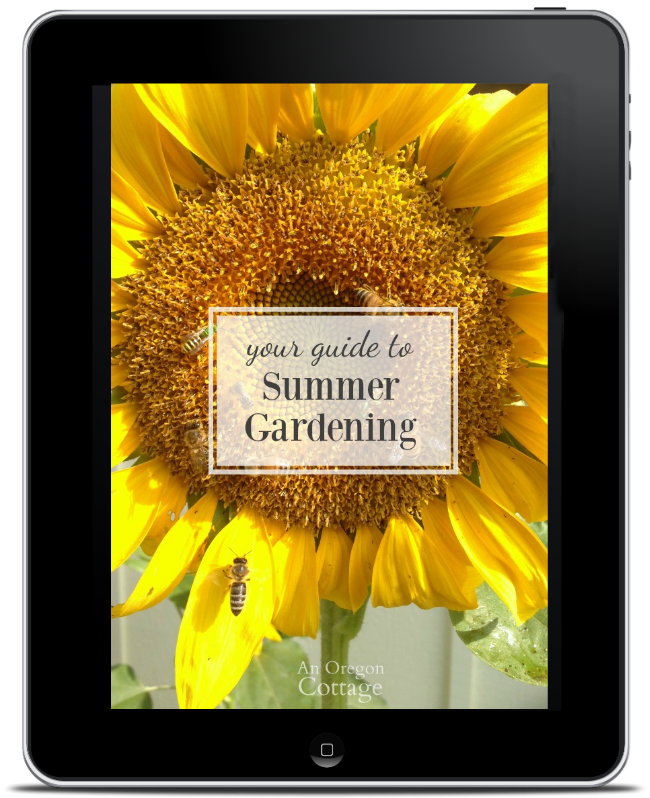 Summer gardening guide on iPad