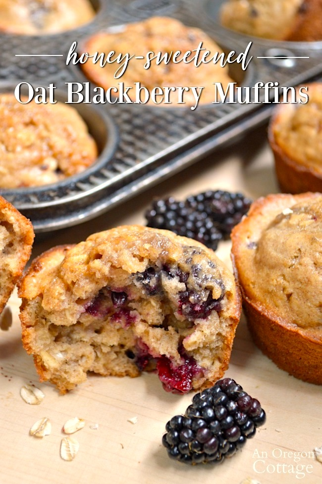 Honey Sweetened Oat Blackberry Muffins